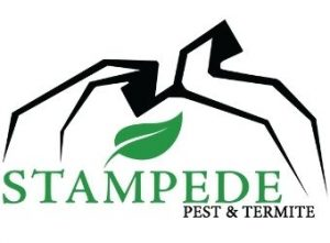 small stampede logo