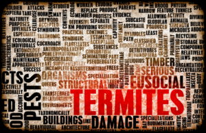 termite treatment prosper tx