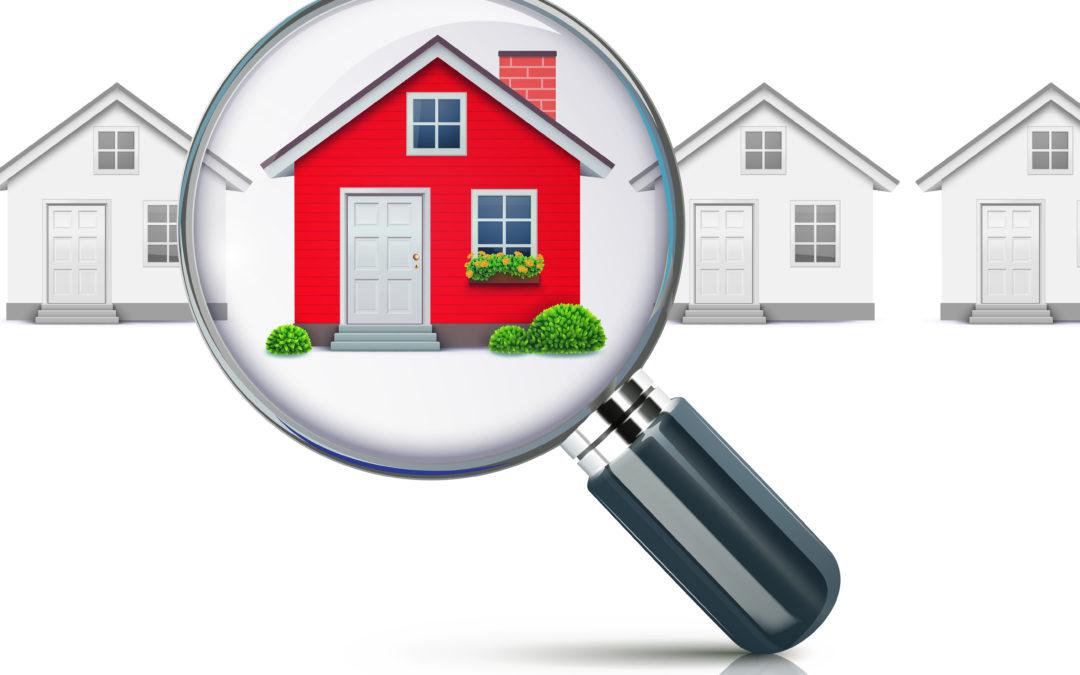 Termite Inspection Houston and Termite Inspection Dallas