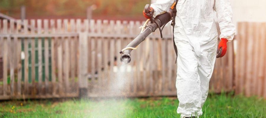 mosquito technician Fogg back yard