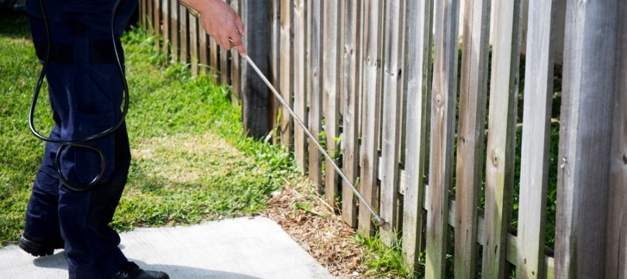 pest control services in Prosper, Texas - Prosper, TX technician spraying around yard