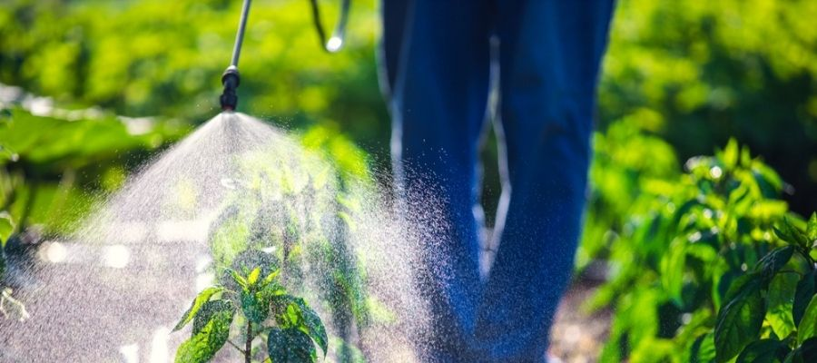 organic pest control application