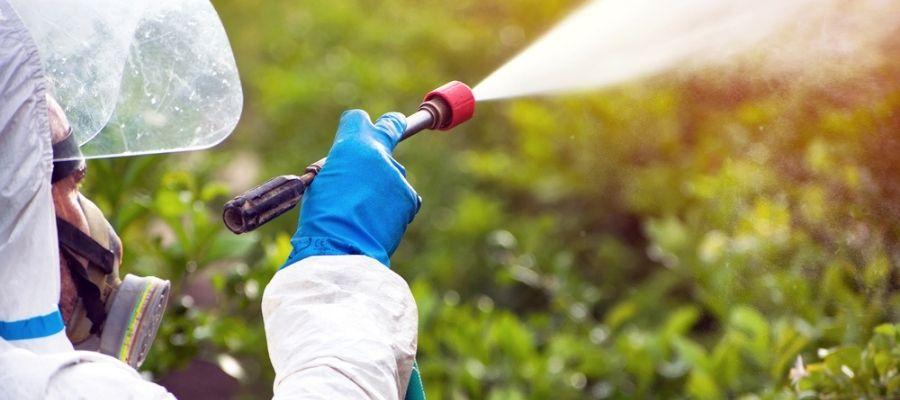 pest tech spraying organic pest control treatment