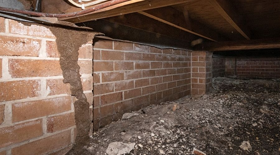 A home's crawl space with a termite infestation